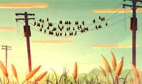 全新款沃尔沃V40 动画广告:小鸟