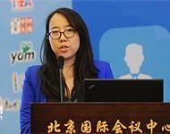 李智:两岸电子商务发展